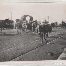 Fotografía antigua: SEVILLA 1924 CARROZAS. ASNOS O BURROS DE CARGA. NO FIGURA FOTÓGRAFO. 13 X 10,50 CM. Lote 195414877