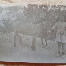 Fotografía antigua: ANTIGUA FOTOGRAFIA COSTUMBRISTA NIÑOS CON BORRICO W 1920. Lote 199196637