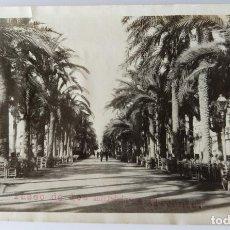 Fotografía antigua: ALICANTE PASEO DE LOS MARTIRES 1927. Lote 204692275
