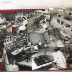 Fotografía antigua: LOTE DE FOTOGRAFÍAS DE PUIG FARRAN. LABORATORIO FARMACÉUTICO DE BARCELONA 1940'S.. Lote 210710556
