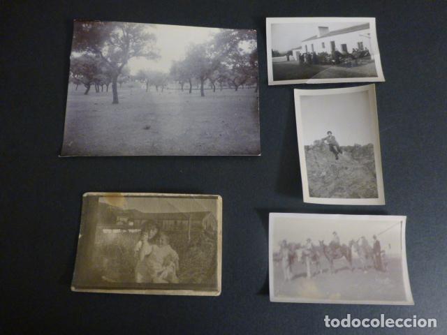 Fotografía antigua: CORTIJO DE FERNAN-SANCHEZ CACERES CONJUNTO 35 FOTOGRAFIAS 1910 A 1940 - Foto 2 - 217176860