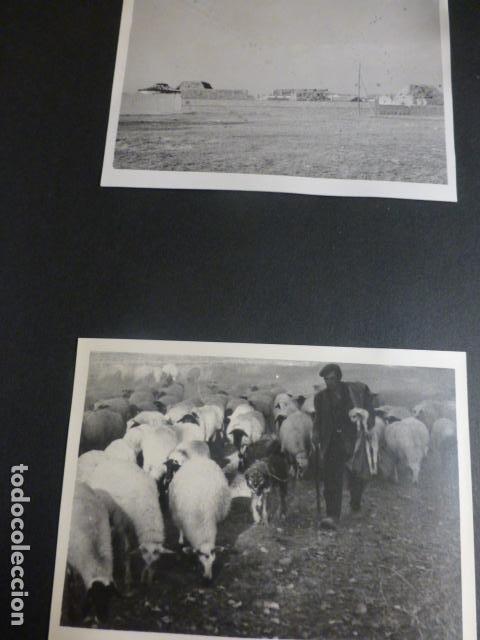 Fotografía antigua: BALTANAS PALENCIA 16 ANTIGUAS FOTOGRAFIAS 7 X 10 CMTS - Foto 4 - 217178516