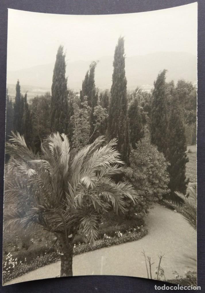 MALAGA 1950 JARDINES DE LA PUERTA OSCURA TAMAÑO 15.5 X 11.5 CM. (Fotografía Antigua - Gelatinobromuro)