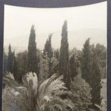 Fotografía antigua: MALAGA 1950 JARDINES DE LA PUERTA OSCURA TAMAÑO 15.5 X 11.5 CM.. Lote 221671782