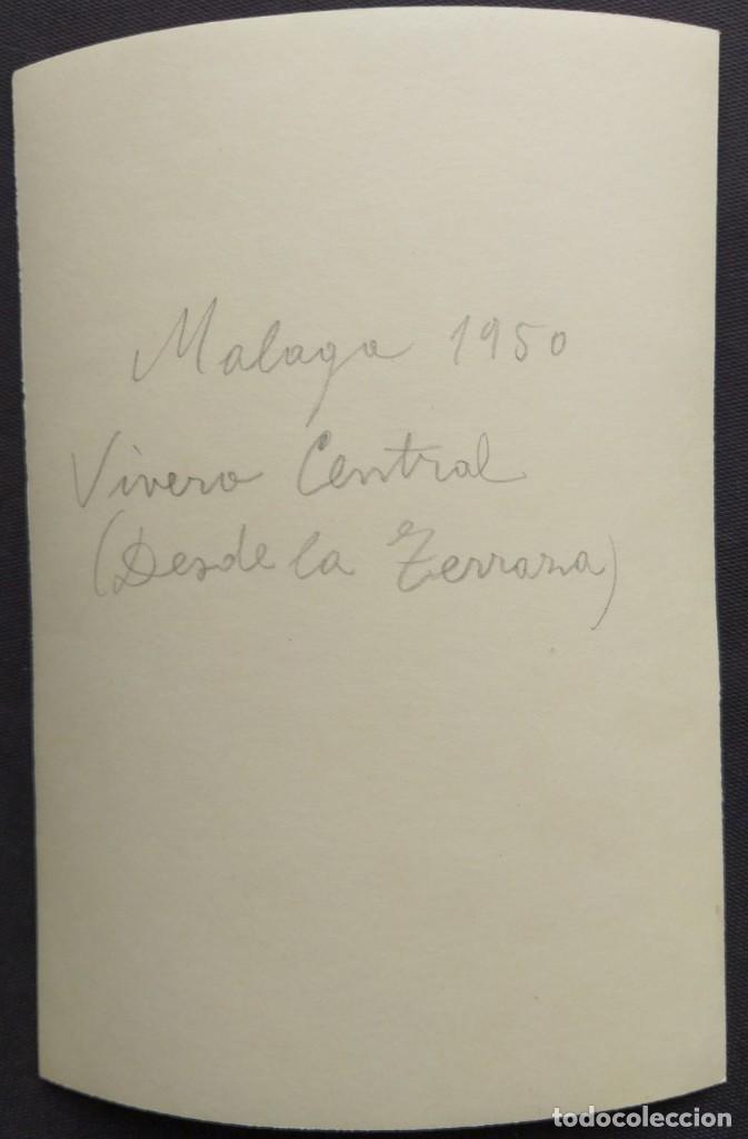 Fotografía antigua: MALAGA 1950 JARDINES DE LA PUERTA OSCURA TAMAÑO 15.5 X 11.5 CM. - Foto 2 - 221671782