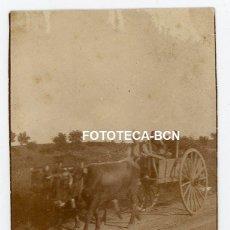 Fotografía antigua: FOTO ORIGINAL CARRO TIRADO POR BUEYES CATALUNYA AÑOS 20/30. Lote 224463172