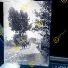 Fotografía antigua: PLACA CRISTAL GELATINO BROMURO COMUNIDAD VALENCIANA VALENCIA. PP. S.XX. Lote 251500185