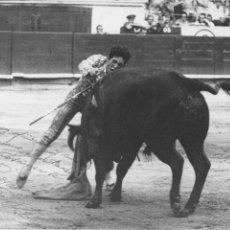 Fotografía antigua: FOTOGRAFIA 18 X 24 CM. DEL TORERO PACO CAMINO, NATURAL DE COMAS SEVILLA, CON AUTOGRAFO. Lote 255002565