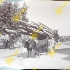 Fotografía antigua: PLACA NEGATIVO CRISTAL GELATINO BROMURO 1920-30 ZONA DE VALENCIA O CASTELLÓN. Lote 255960525