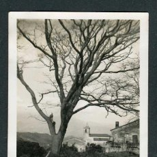 Fotografia antica: MONTNEGRE. IGLESIA. ERMITA. C.1955. Lote 264210888