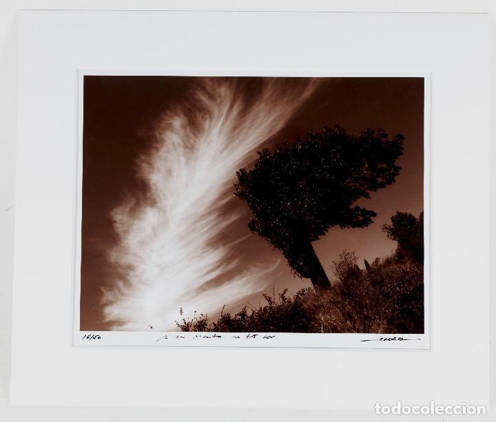 MANEL ESCLUSA - FOTOGRAFÍA 19X24 CM. EN PASPARTOUT 27,5X33CM. (Fotografía Antigua - Gelatinobromuro)