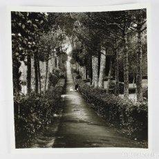 Fotografía antigua: JOAN FONTCUBERTA - PARQUE DE ALBANO, ROMA. AÑO 1987. 24X25CM.. Lote 289200628