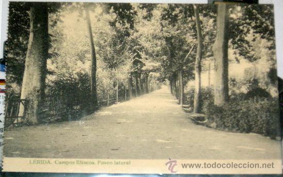 POSTAL DE LÉRIDA - CAMPOS ELISIOS. PASEO LATERAL (Fotografía Antigua - Tarjeta Postal)