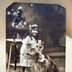 Fotografía antigua: ANTIGUA FOTO POSTAL, FOTOGRAFIA, DE ESTUDIO, NIÑA CON PERRO, BELGICA, CIRCULADA, 1914. Lote 29538849
