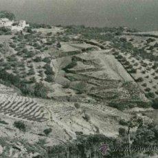 Fotografía antigua: MARESME. PRECIOSA FOTO DE UNA GRAN CASA PAIRAL. MAR DE FONDO. C. 1900. Lote 31607670