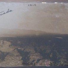 Fotografía antigua: ANTIGUA FOTOGRAFIA TARJETA POSTAL PAISAJE CON VIÑAS CARRO TARTANA CAÑADA 1914 MURCIA ?. Lote 35256200