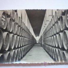 Fotografía antigua: FOTOGRAFÍA AÑOS 50 DEL INTERIOR DE LA BODEGA SAN PATRICIA. JEREZ. S/C. Lote 37640654