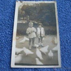 Fotografía antigua: POSTAL ANTIGUA: FOTOGRAFIA DESCONOCIDA.- TARJETA POSTAL . SIN CIRCULAR. PALOMAS PLAZA AMERICA?. Lote 39732001