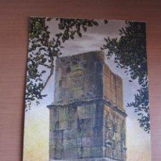 Fotografía antigua: POSTAL DE TARRAGONA COLOREADA DE FINALES XIX. Lote 42083930