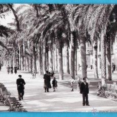 Fotografía antigua: POSTAL FOTOGRAFICA ++ ¿LA RECONOCE? ++ PASEO / AVENIDA (?) - SIN MAS DATOS - AÑOS 40. Lote 44294342