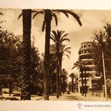 Fotografía antigua: TARJETA POSTAL VALENCIA ALAMEDA PASEO DE LAS PALMERAS. Lote 52462743