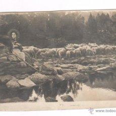 Fotografía antigua: PERE CASAS ABARCA (1875-1958) 1900'S APROX. PASTORA CON OVEJAS. Lote 54555729