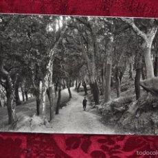 Fotografía antigua: ANTIGUA FOTOGRAFIA DE ARBÚCIES (GIRONA). AÑOS 50. CAMINO DE LA CURVADORA. Lote 57848345