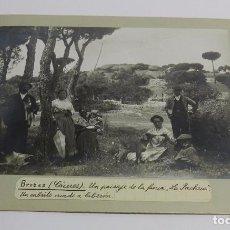 Fotografía antigua: FOTOGRAFIA DE BROZAS, CACERES, UN PAISAJE DE LA FINCA LA PACHECA, UN CABRITO CRIADO A BIBERON, MIDE . Lote 83888036