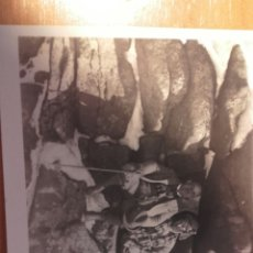 Fotografía antigua: MAR 21 FOTOGRAFIA DE PAREJA - FISONOMIA CAUCÁSICA TARJETA POSTAL SOBRE 138 X 90 MILIMETROS. Lote 86449844