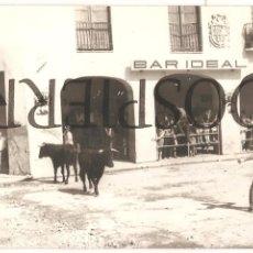FOTO, VILLALPANDO, ZAMORA, FIESTA DE SAN ROQUE, AÑOS 60