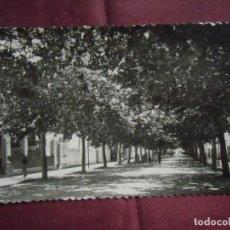 Fotografía antigua: DENIA(ALICANTE)POSTAL S/C ED.GARCIA GARRABELLA, Nº 9.. Lote 133677046