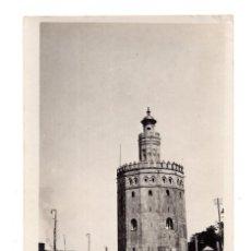 Fotografía antigua: SEVILLA.- C.1925. TORRE DEL ORO. FOTO TOMADA POR TURISTA ITALIANO.. Lote 139749474