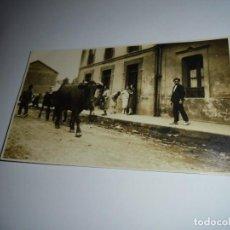Fotografía antigua: FOTOGRAFIA VACAS POR EL PUEBLO. Lote 148086490