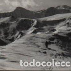 Fotografia antica: FOTO TAMAÑO POSTAL CARENA AL CIM DE GRA DE FAJOL COLL LA MARRANA TORRENEULES PUIGMAL RIPOLLES RIPOLL. Lote 151000470