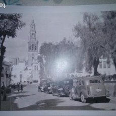 Fotografía antigua: CARMONA FOTO 28 X 43 CENTÍMETROS APROXIMADAMENTE. Lote 152758170