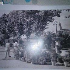 Fotografía antigua: CARMONA, 28 X 43 CENTÍMETROS APROXIMADAMENTE. Lote 152758358