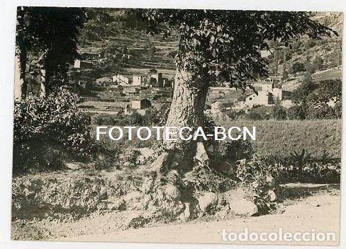 ANDORRA LES ESCALDES BARRIO DE ENGORDANY AÑOS 20/30 (Fotografía Antigua - Tarjeta Postal)