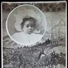 Fotografía antigua: RETRATO DE UN BEBÉ SOBRE UN PAISAJE DE MONTAÑA CON CIERVOS. UNIÓN UNIVERSAL DE CORREOS ESPAÑA.. Lote 169127940