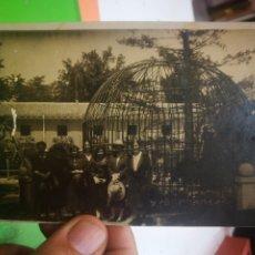 Fotografía antigua: FOTO POSTAL ANTIGUA ORIGINAL DE SEÑORAS POSANDO EN EL PARQUE PEQUEÑOS DETERIOROS EVIDENTES. Lote 178977207