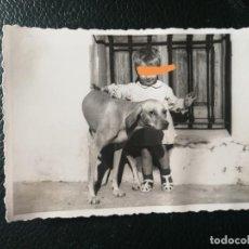 Fotografía antigua: ANTIGUA FOTOGRAFÍA. NIÑO CON EL PERRO. FOTO AÑOS 50.. Lote 197152391