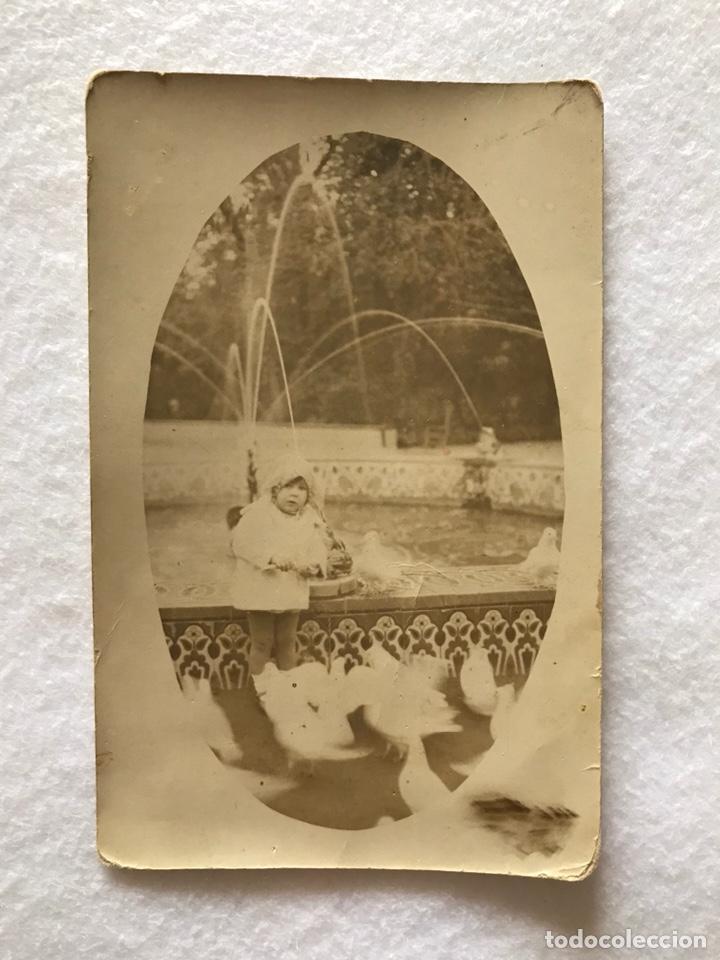 POSTAL FOTOGRÁFICA FOTOGRAFÍA. NIÑA EN EL PARQUE DE MARIA LUISA. FUENTE DE LAS RANAS. SEVILLA (Fotografía Antigua - Tarjeta Postal)