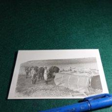 Fotografía antigua: SEGOVIA. MILITARES. SOBRE 1925.. Lote 230951720