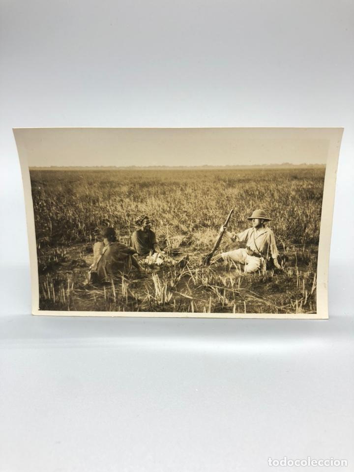 Fotografía antigua: Lote de 108 antiguas fotografías Africa cazadores de animales africanos ,elefantes,marfil... - Foto 10 - 247280240