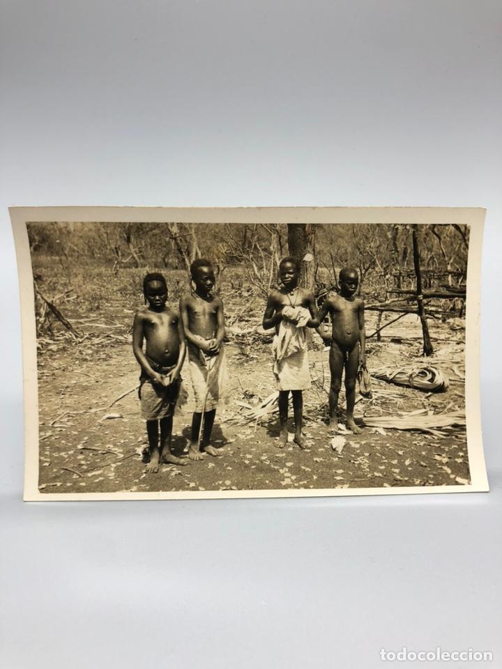 Fotografía antigua: Lote de 108 antiguas fotografías Africa cazadores de animales africanos ,elefantes,marfil... - Foto 12 - 247280240