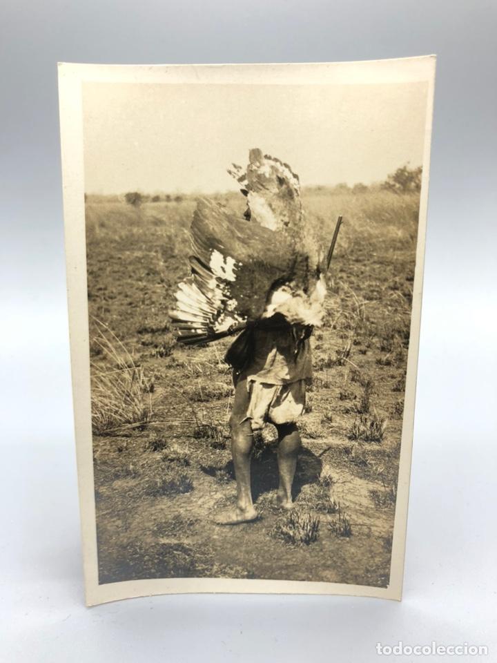 Fotografía antigua: Lote de 108 antiguas fotografías Africa cazadores de animales africanos ,elefantes,marfil... - Foto 16 - 247280240