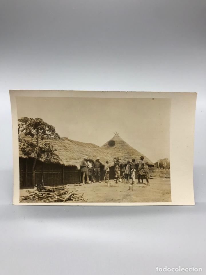 Fotografía antigua: Lote de 108 antiguas fotografías Africa cazadores de animales africanos ,elefantes,marfil... - Foto 19 - 247280240