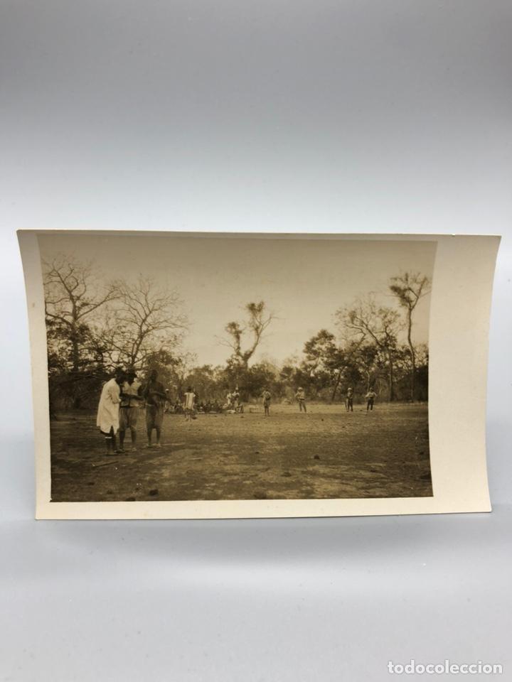 Fotografía antigua: Lote de 108 antiguas fotografías Africa cazadores de animales africanos ,elefantes,marfil... - Foto 20 - 247280240