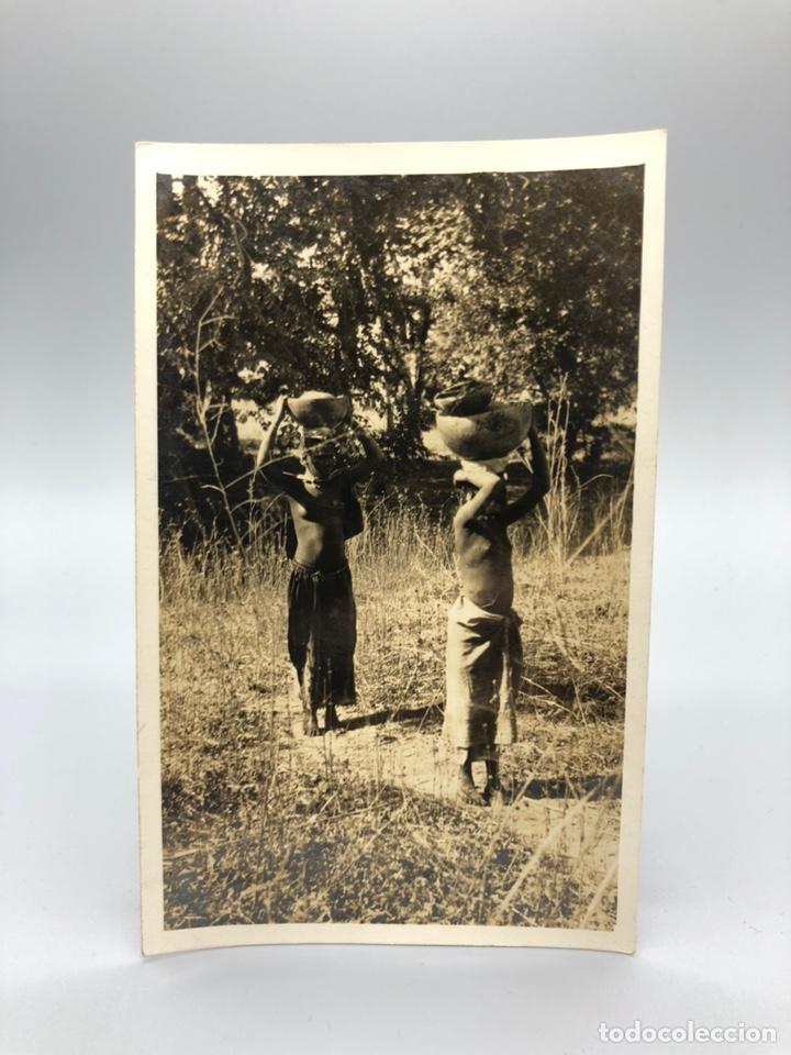 Fotografía antigua: Lote de 108 antiguas fotografías Africa cazadores de animales africanos ,elefantes,marfil... - Foto 24 - 247280240