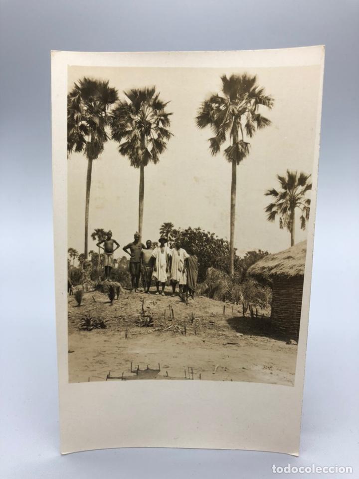 Fotografía antigua: Lote de 108 antiguas fotografías Africa cazadores de animales africanos ,elefantes,marfil... - Foto 25 - 247280240