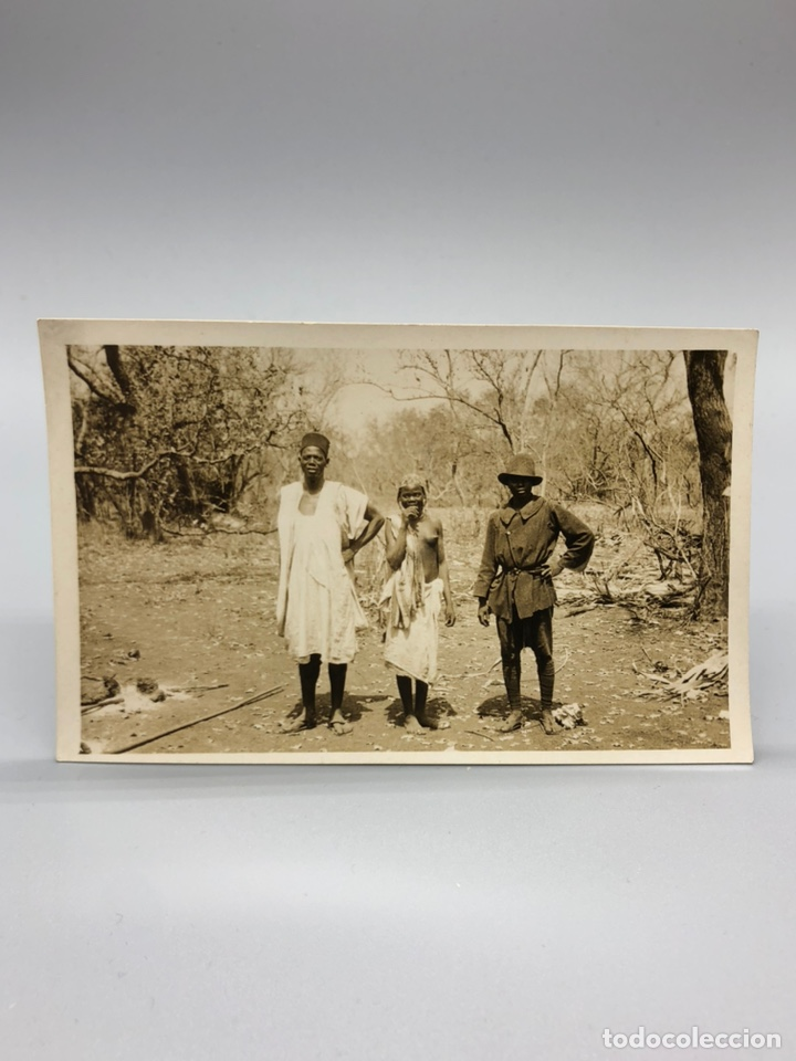 Fotografía antigua: Lote de 108 antiguas fotografías Africa cazadores de animales africanos ,elefantes,marfil... - Foto 27 - 247280240